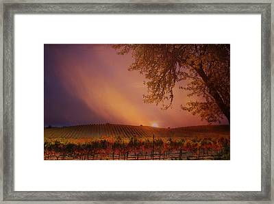 Autumn In Wine Country Framed Print by Stephanie Laird