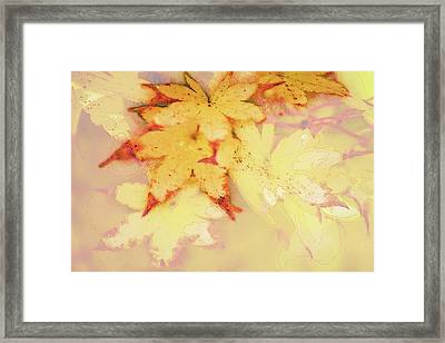 Autumn In Yellow Framed Print