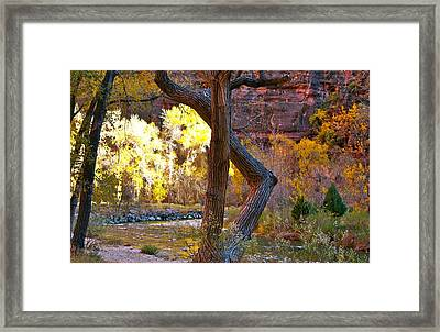 Autumn In Zion Framed Print
