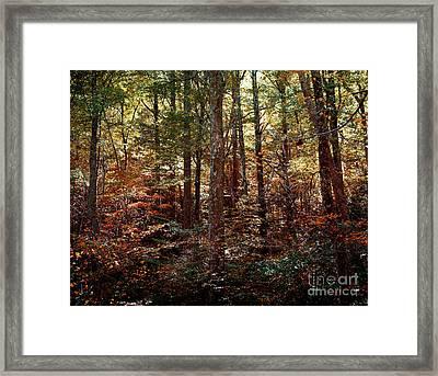 Autumn Is Stirring Framed Print