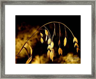 Autumn Jewelery Framed Print
