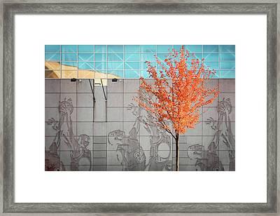 Autumn Kohl Center Framed Print by Todd Klassy