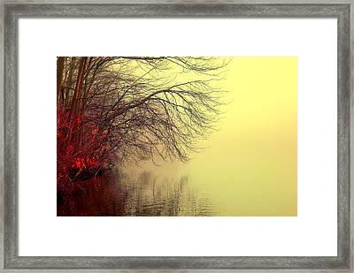 Autumn Lake Framed Print by Aron Chervin