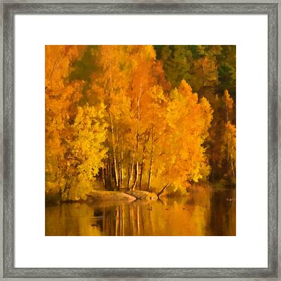 Autumn Lake Framed Print by Lutz Baar