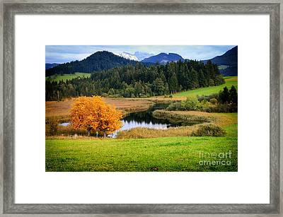Autumn Landscape And Lake Framed Print by Sabine Jacobs