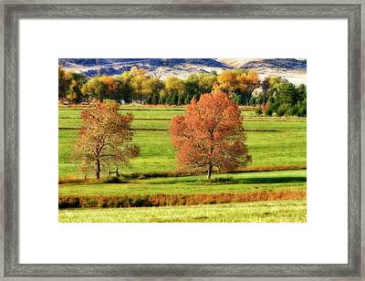 Autumn Landscape Dream Framed Print by James BO  Insogna