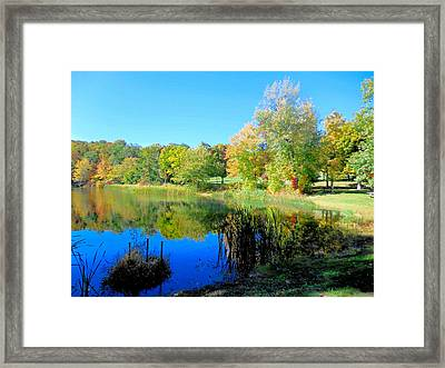 Autumn Landscape Of Lake 7 Framed Print