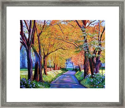 Autumn Lane Framed Print by David Lloyd Glover