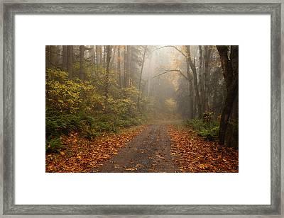 Autumn Lane Framed Print by Mike  Dawson