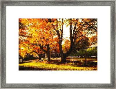 Framed Print featuring the photograph Autumn Lane by Robert Clifford