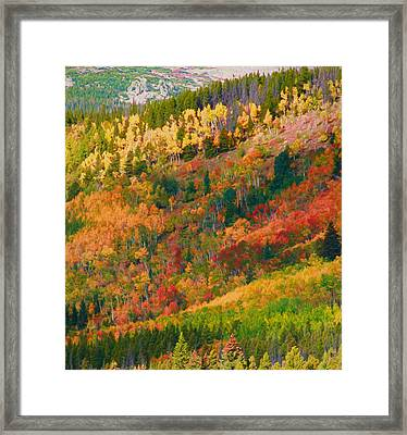 Autumn Layers Of Color In The Rockies Framed Print