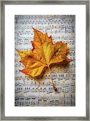 Autumn Leaf On Sheet Music Framed Print
