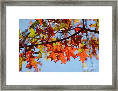 Autumn Leaves 16 Framed Print by Jean Bernard Roussilhe