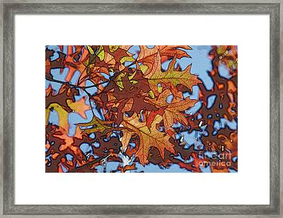 Autumn Leaves 17 - Variation  2 Framed Print by Jean Bernard Roussilhe