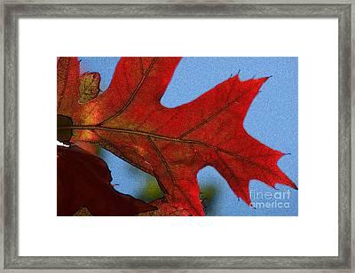 Autumn Leaves 18 Framed Print by Jean Bernard Roussilhe