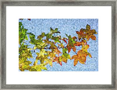 Framed Print featuring the photograph Autumn Leaves 2 by Jean Bernard Roussilhe