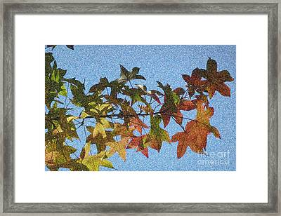 Framed Print featuring the photograph Autumn Leaves 3 by Jean Bernard Roussilhe