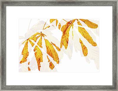 Autumn Leaves Abstract 2 Framed Print