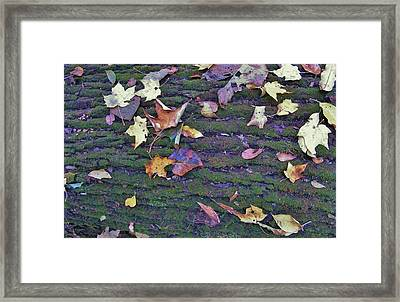 Autumn Leaves And Moss On Log   Indiana Framed Print