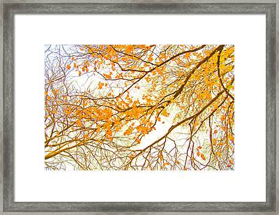 Autumn Leaves Framed Print by Az Jackson
