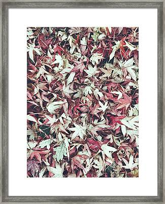 Autumn Leaves Background Framed Print by Tom Gowanlock