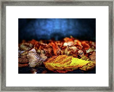 Autumn Leaves Framed Print by Bob Orsillo
