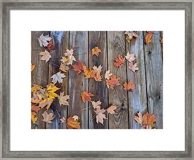 Autumn Leaves Fall Framed Print