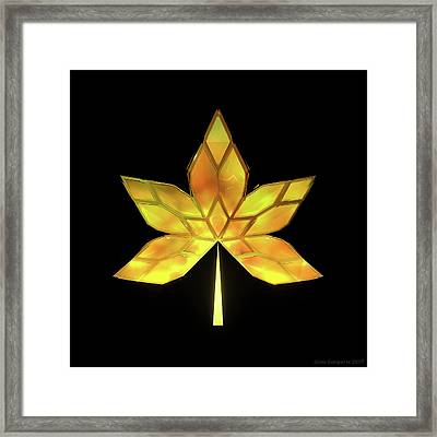 Autumn Leaves - Frame 070 Framed Print