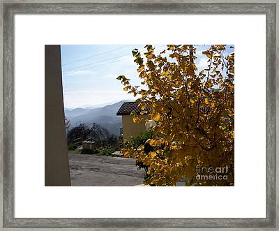 Framed Print featuring the photograph Autumn Leaves by Judy Kirouac