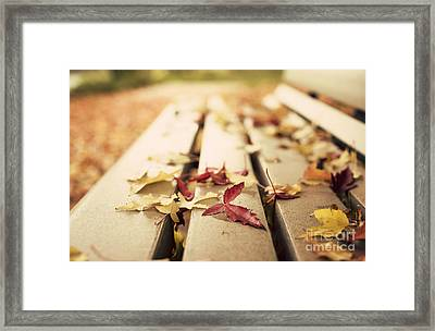 Autumn Leaves  Framed Print by Juli Scalzi