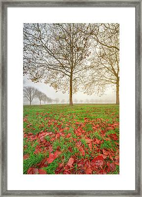 Framed Print featuring the photograph Autumn Leaves Near To Far Super High Resolution by William Lee