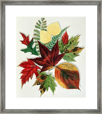 Autumn Leaves Framed Print by Nina Moore