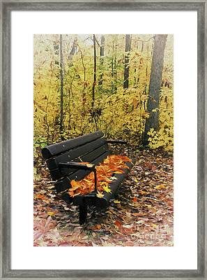 Framed Print featuring the painting Autumn Leaves On A Bench Ap by Dan Carmichael