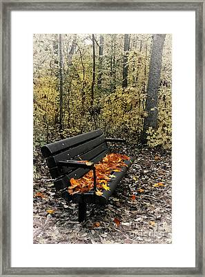 Framed Print featuring the photograph Autumn Leaves On A Bench by Dan Carmichael