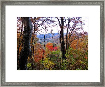 Autumn Leaves On Blue Ridge Parkway Framed Print
