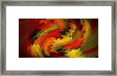 Autumn Leaves Framed Print by Terry Mulligan