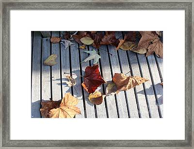 Autumn Leaves Three Framed Print by Amy Wilkinson