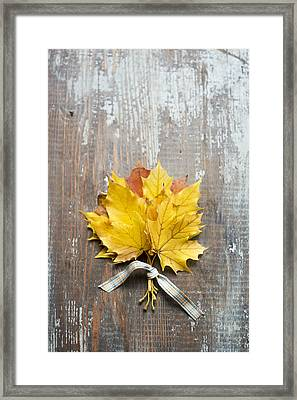Autumn Leaves Tied With Ribbon Framed Print