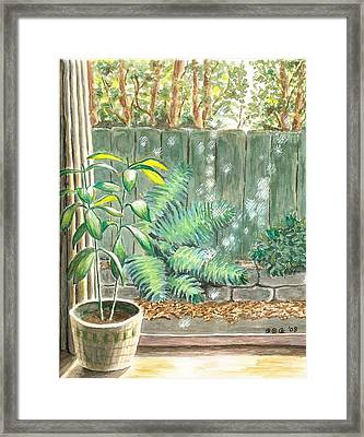 Autumn Light Framed Print