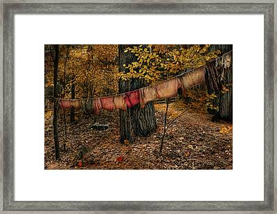 Framed Print featuring the photograph Autumn Linens by Robin-Lee Vieira