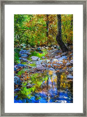 Autumn Maples In Southfork Framed Print