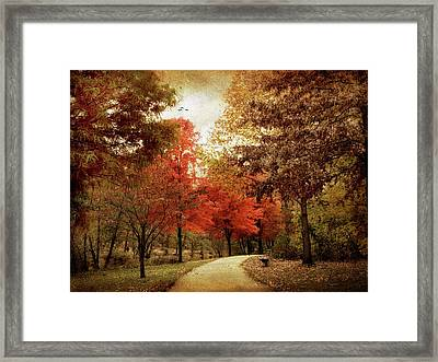 Autumn Maples Framed Print by Jessica Jenney