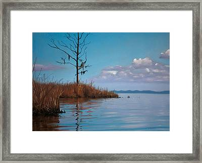 Autumn Marsh Reeds Framed Print