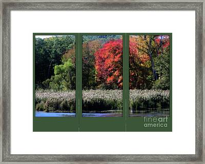 Framed Print featuring the photograph Autumn Marsh Through A Window by Smilin Eyes  Treasures