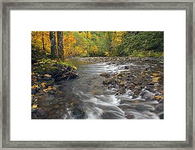 Autumn Meander Framed Print by Mike  Dawson