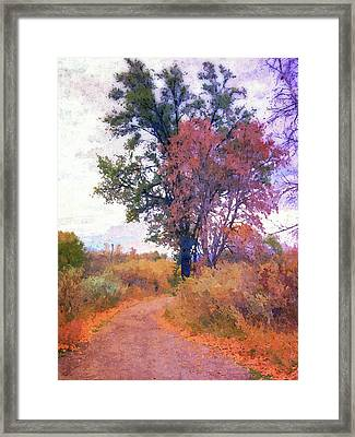 Autumn Melancholy Framed Print
