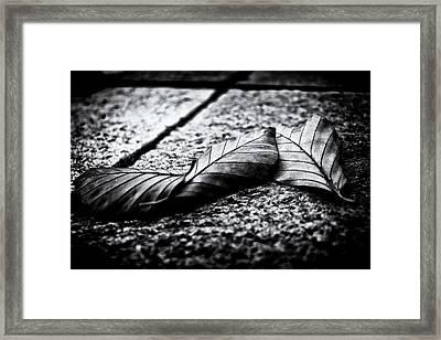 Autumn Memories  Framed Print