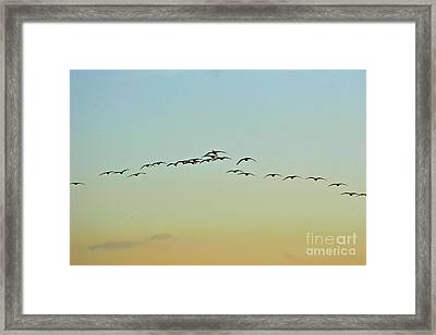 Autumn Migration Framed Print