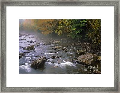 Autumn Mist Cranberry River Framed Print by Thomas R Fletcher
