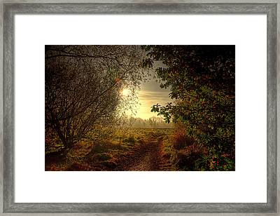 Autumn Mist Framed Print by Kim Shatwell-Irishphotographer